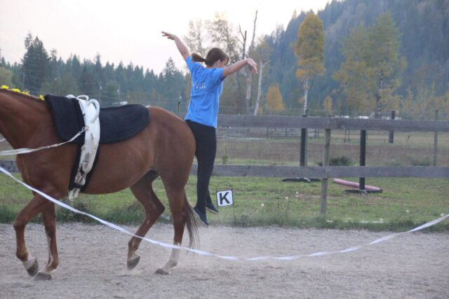 Learn Horse Vaulting