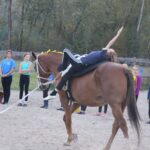 Learn Horse Vaulting!