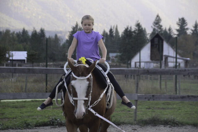 Vaulting Lessons